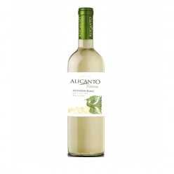 ruou vang Alicanto Sauvignon Blanc